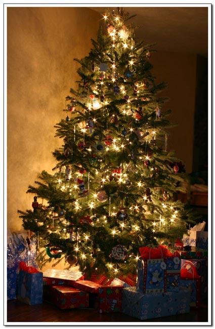 _christmasstree