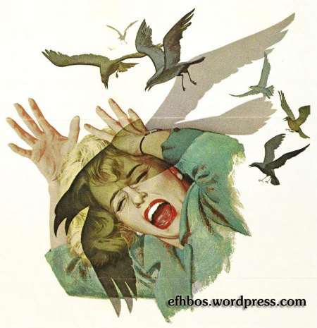 the_birds-1